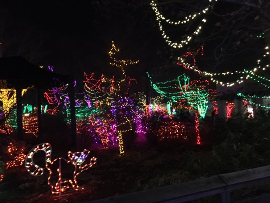 Indianapolis Zoo: outside under the lights