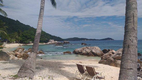 Coral View Island Resort: La baie face à l'hôtel
