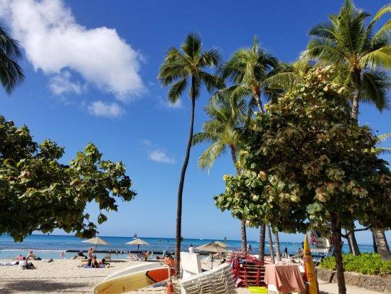 The Beach Bar Waikiki