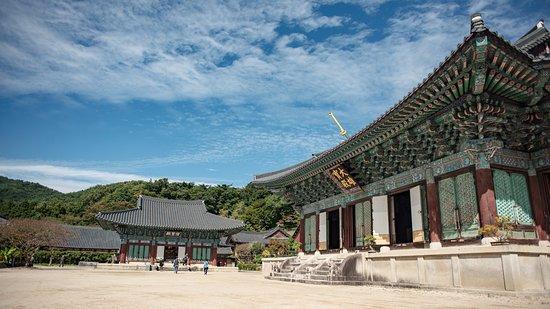 Suncheon, South Korea: 대웅전 뒷편으로는 공사가 한창이었다.