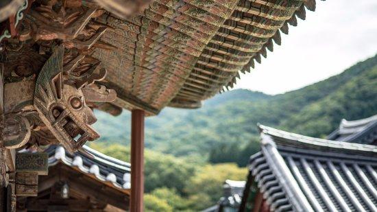 Suncheon, South Korea: 익살적으로 느껴지기까지 하는 용의 모습.