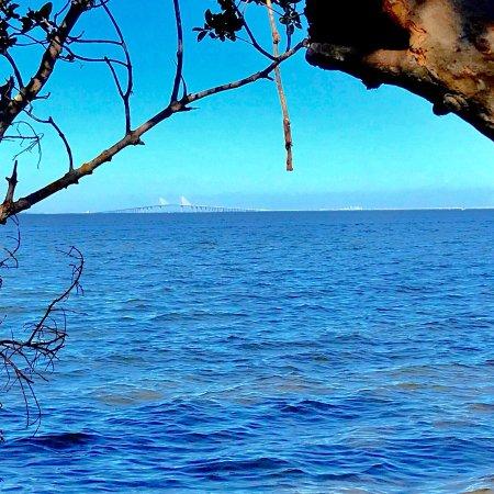 Palmetto, FL: photo2.jpg