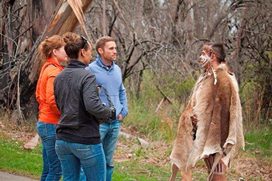 Aboriginal Day Tour from Sydney