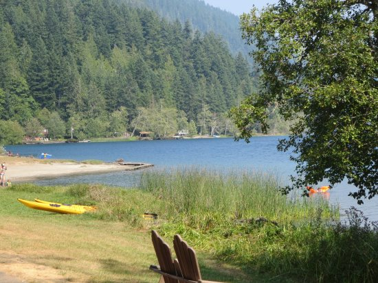 Lovely view of lake crescent log cabin resort for Log cabin resort lago crescent wa