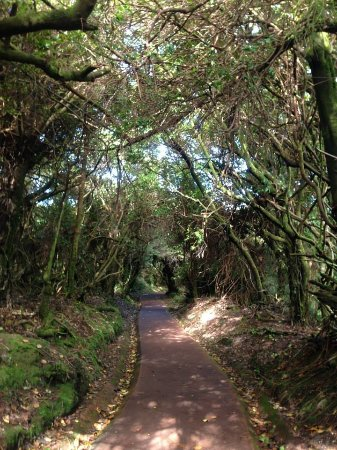 Poas Volcano: Hiking trails