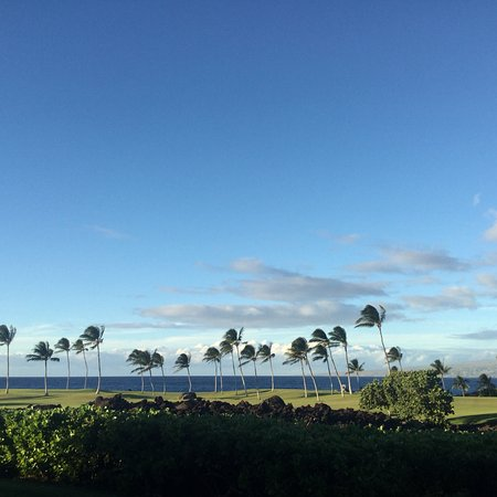 Mauna Lani Point: photo2.jpg