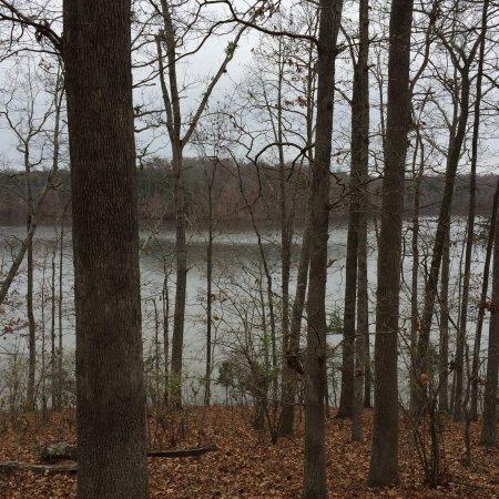 Greensboro, Carolina del Norte: photo1.jpg