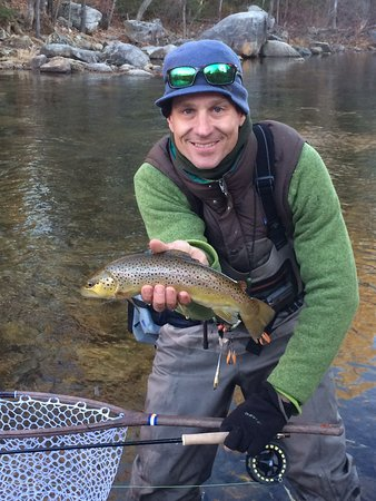 Gorham, ME: Nice fall brownie