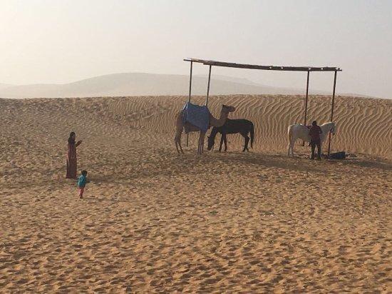 Al Badeyah Eyes Day Tours (ABET) Desert Safari: photo9.jpg