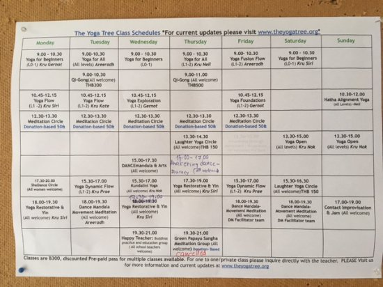 The Yoga Tree: the schedule