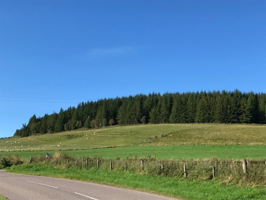 Glenlivet, UK: Gorgeous views