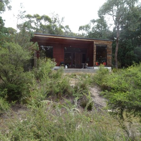 DULC Cabins : In the forest