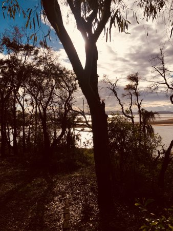 Agnes Water, Australia: Walk through the native bush