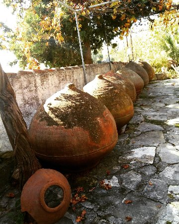 Anogyra, Cyprus: IMG_20171202_192154_817_large.jpg