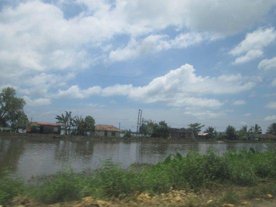 Changanacherry, อินเดีย: View of A C Canal from Resort