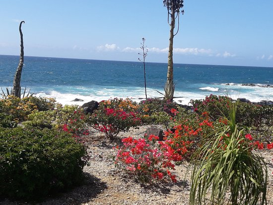 Club Med Albion Villas - Mauritius: Vue proche de la mer