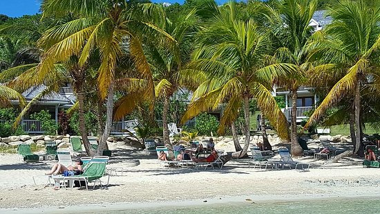Freetown, Antigua: IMG-20171122-WA0009_large.jpg