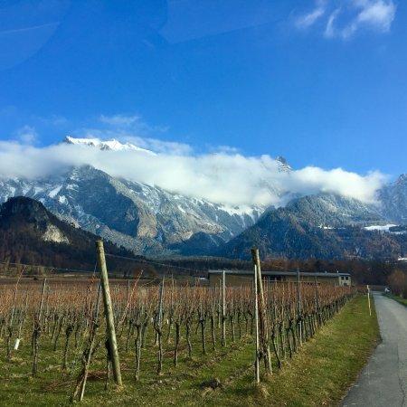 Schlaf-Fass Riesling-Silvaner Maienfeld: Umgebung