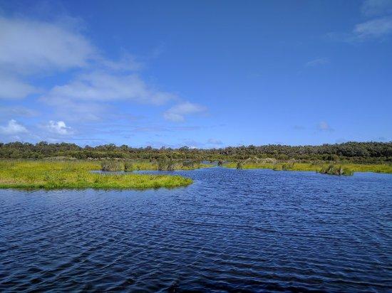 Yanchep National Park: IMG_20170923_104233_large.jpg