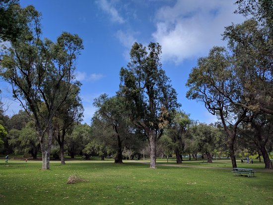 Yanchep, Australia: IMG_20170923_101659_large.jpg