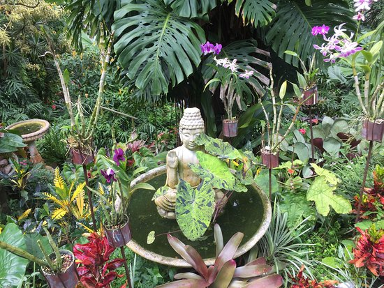 Hunte's Gardens: Peace and Tranquility in the Gardens