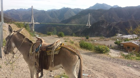 Baluarte Bridge: Un paisaje muy campirano