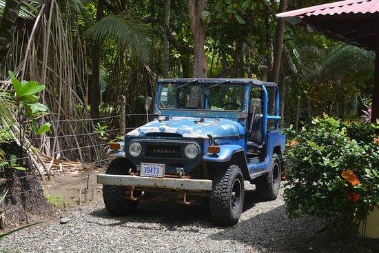 Playa Matapalo, Costa Rica: Peters Spassmobil