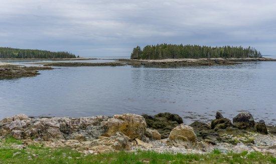 Winter Harbor照片