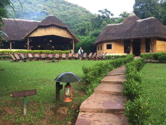 Sanctuary Gorilla Forest Camp: photo0.jpg