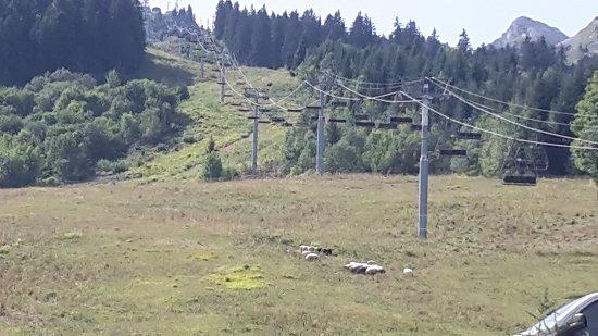 Seythenex, France: 20170827_121048_large.jpg
