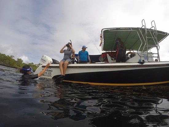 Puerto Villamil, Ecuador: TIEMPO DE IR AL AGUA Y VER TODOS LOS ANIMALES