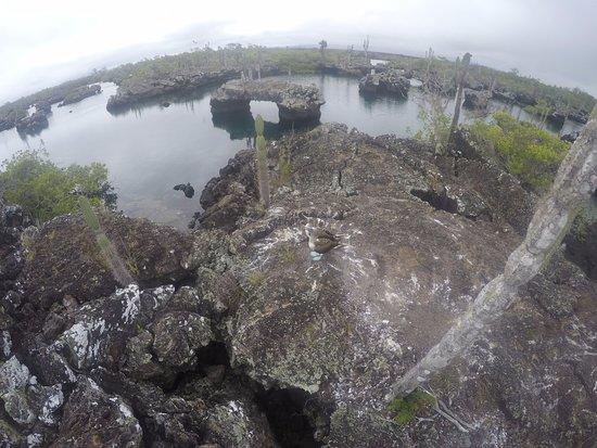 Puerto Villamil, Ecuador: LA MEJOR VISTA EN LOS TUNELES