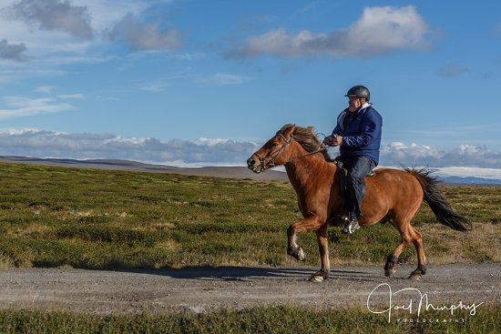 Varmahlid, Iceland: Great instruction even for a very novice beginner rider like me