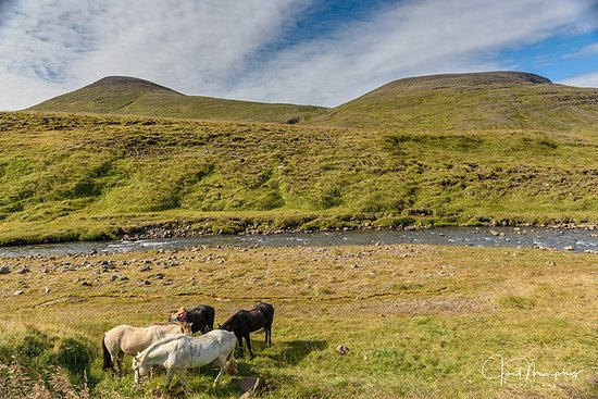 Varmahlid, Iceland: You might notice lack of hordes of tourist on this adventure