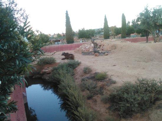 Spata, Greece: Δεκέμβριος 2017