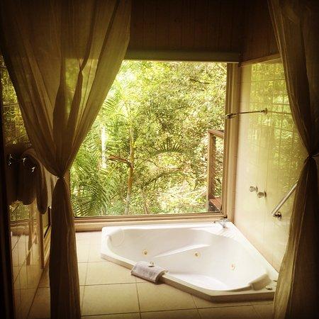 Flaxton, Austrália: A romantic getaway in the loveshack treehouse
