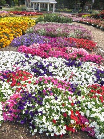 ฟอร์ตคอลลินส์, โคโลราโด: Large Garden