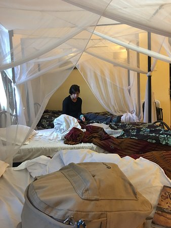 Springlands Hotel: mosquito nets dont work