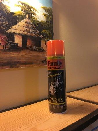 Springlands Hotel: decoration: bug spray