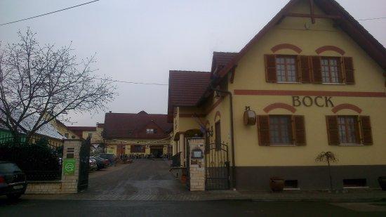 Villany, Ουγγαρία: Bock Hotel