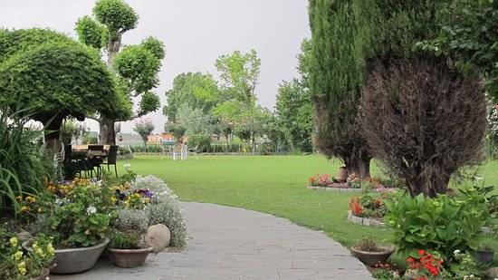 Hotel Dar-Es-Salam: Our garden lush green & full of colour with our Chinar Tree,Cyprus Trees, hydrangeas & rose bush