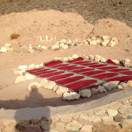 Sinai Safari Adventures : photo1.jpg