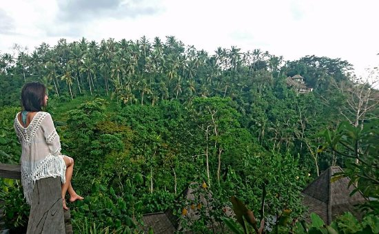 Udhiana Resort Ubud: Astounding Mountain View