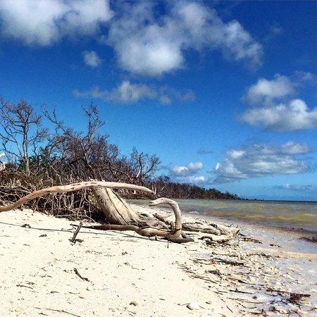 Coco Plum Beach Photo5 Jpg