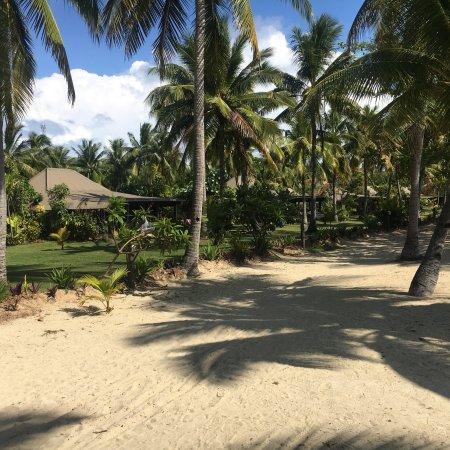 موسكيت كوف آيلاند ريزورت آند مارينا: So beautiful we stayed at Lomani but wished we had stayed here instead. The beach was much nicer