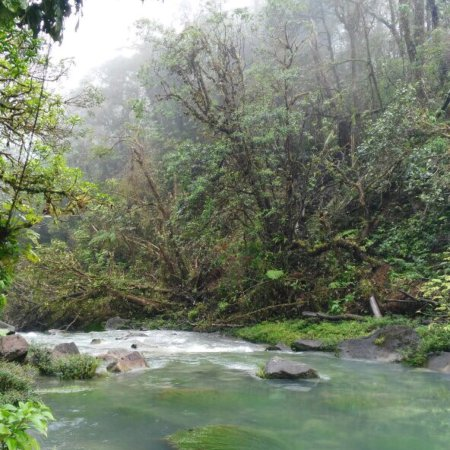 Tenorio Volcano National Park, Costa Rica: photo3.jpg