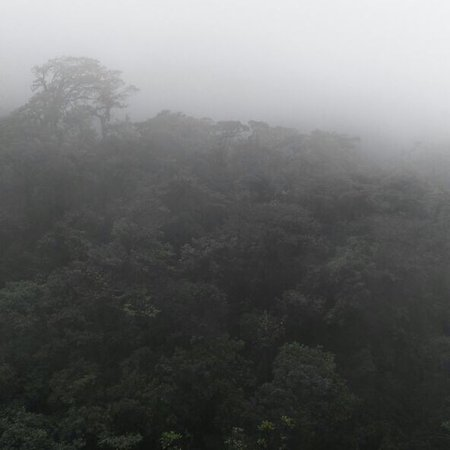 Tenorio Volcano National Park, Costa Rica: photo4.jpg