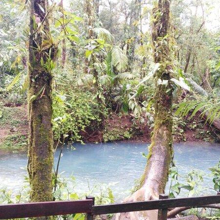 Tenorio Volcano National Park, Costa Rica: photo6.jpg
