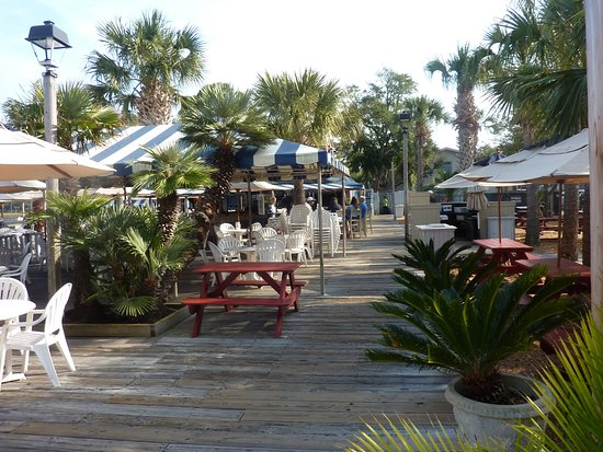Salty Dog Cafe Hilton Head Reviews