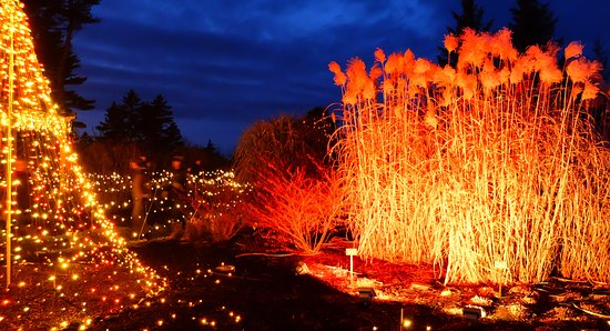 Coastal Maine Botanical Gardens: garden's aglow